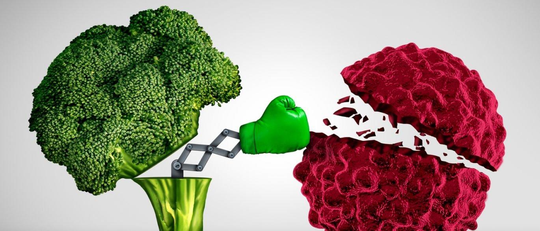 alimentos que causam cancro