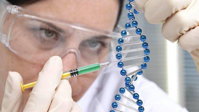 Genética: o que é e o que pode fazer por nós?