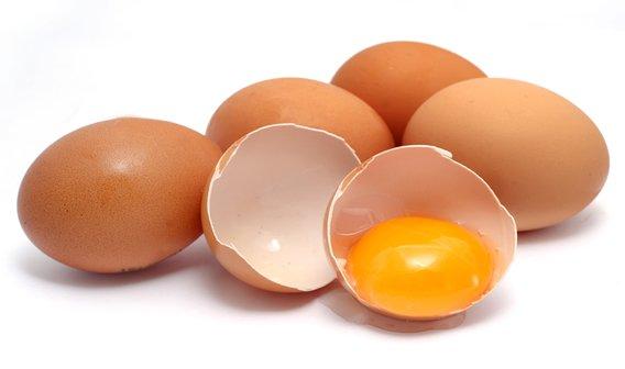 tudo sobre ovos