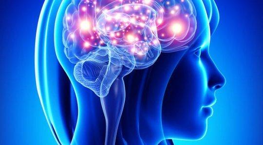 Como funciona o cérebro dos adolescentes?