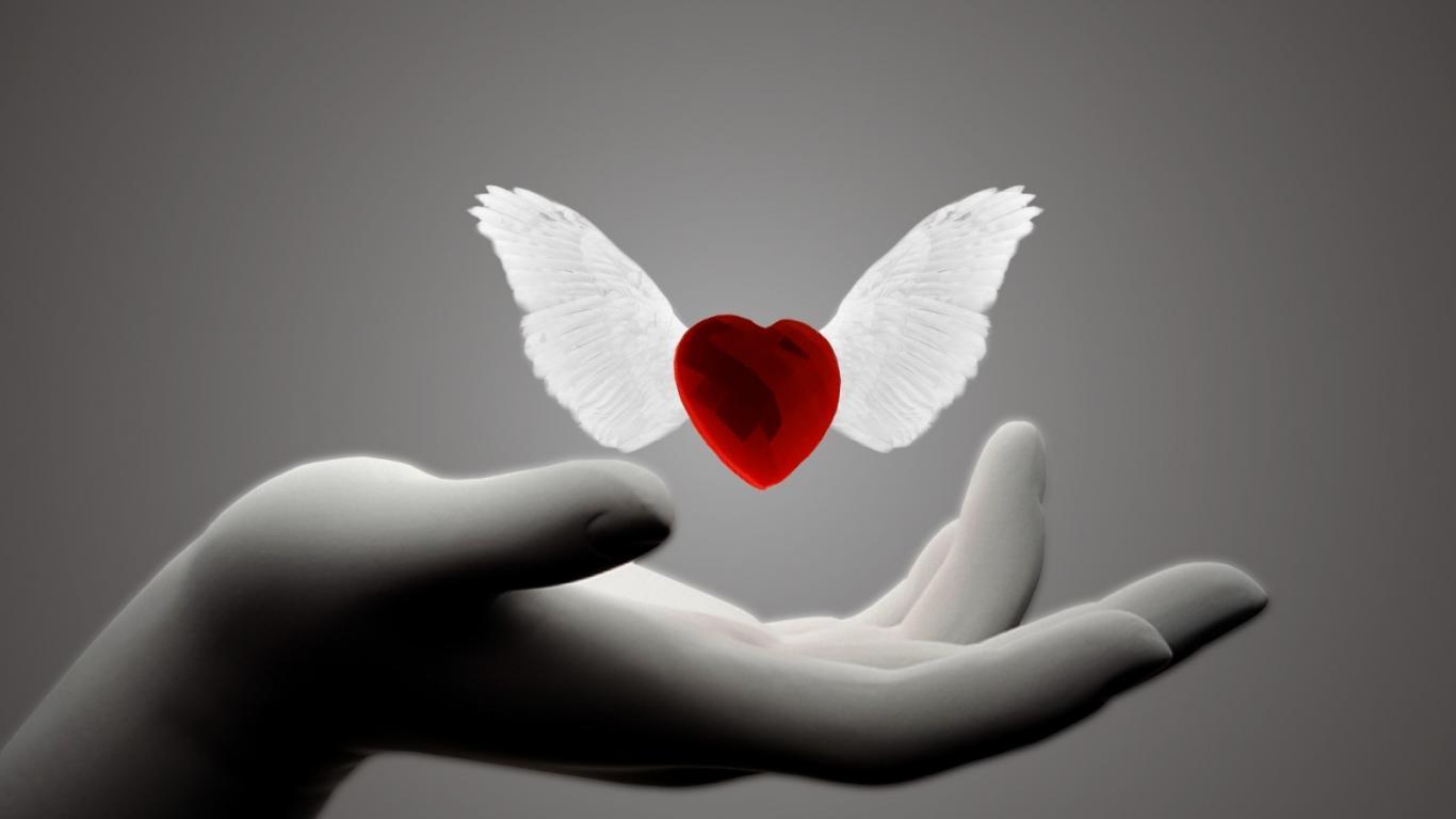 O amor é importante mas não chega!