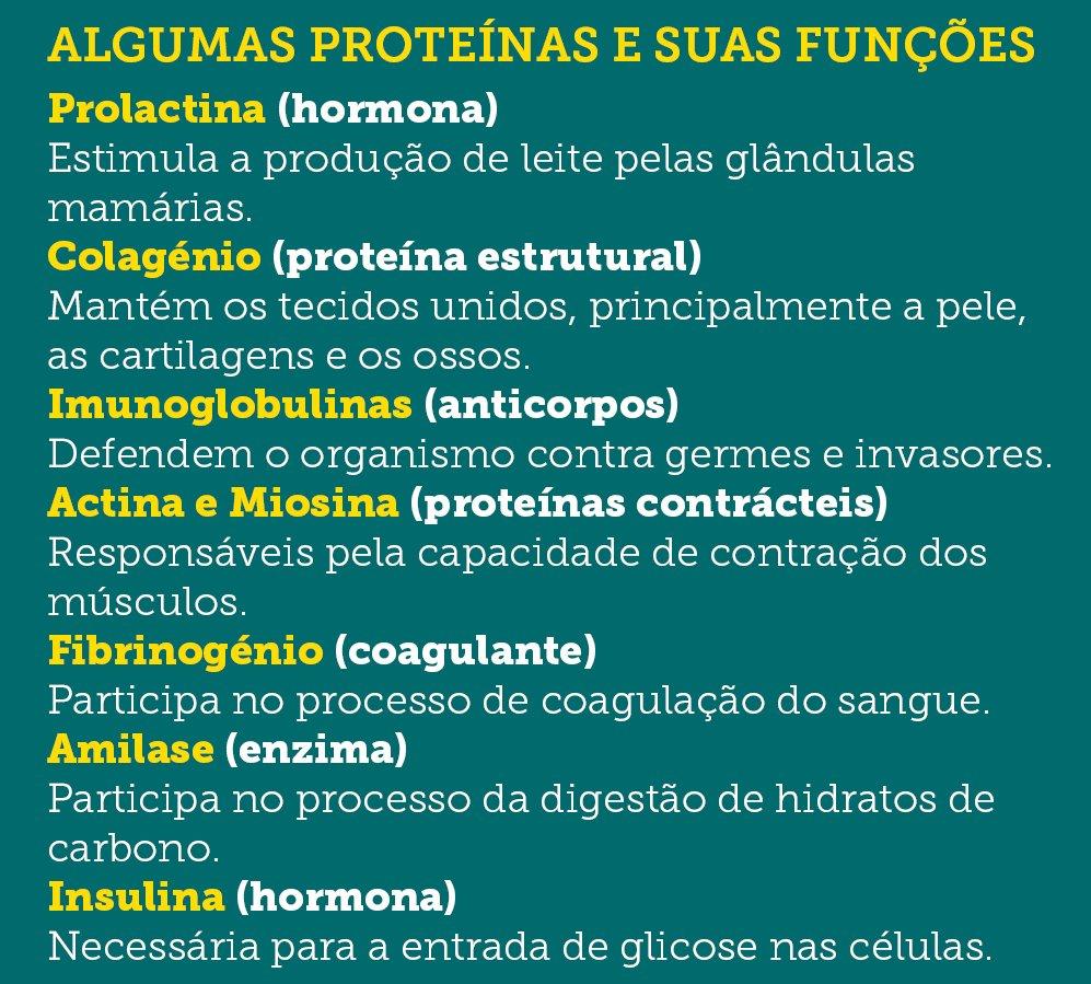 funções das proteínas