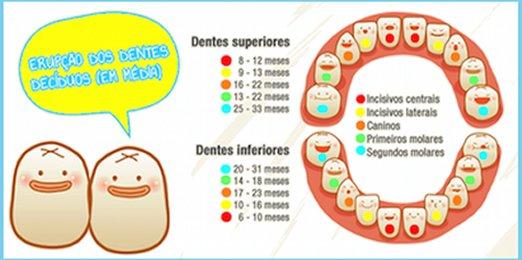 Dentição do bebé