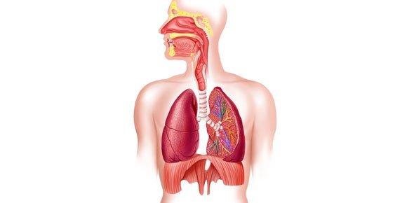 edemas pulmonares